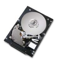 Harddisks - Hitachi 300GB SCSI 10000RPM 8MB 68PIN - HUS103030FL3600