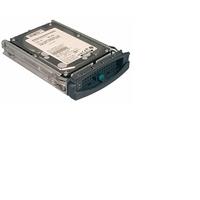 """Harddisks - Fujitsu HDD U320 300GB 15K HOT PLUG 3.5"""" - S26361-F3121-L530"""